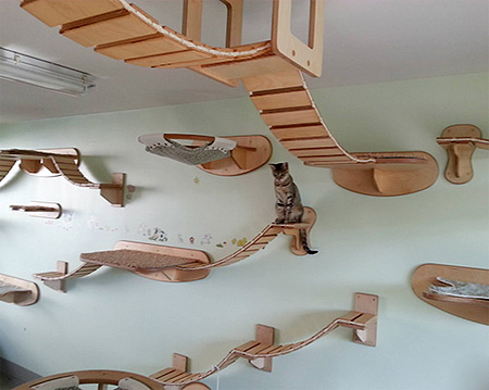 Stefan Hofmann Cat Furniture