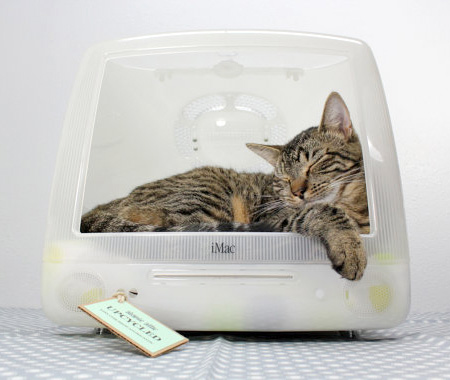 Apple Computer Pet Beds