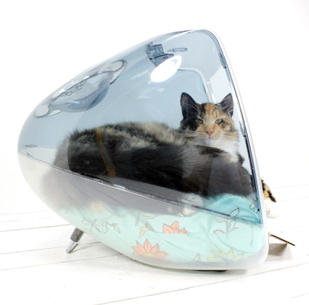 Imac Beds For Cats