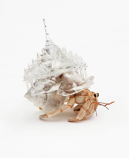 3D Printed Crab Shell