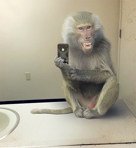 National Geographic Selfie