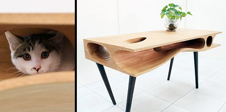 Desk for Cat Owners