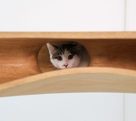 Cat Playground Desk