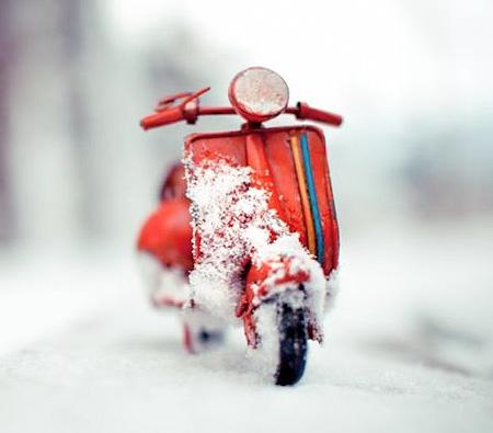 Photos of Miniature Cars