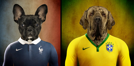 World Cup Dogs