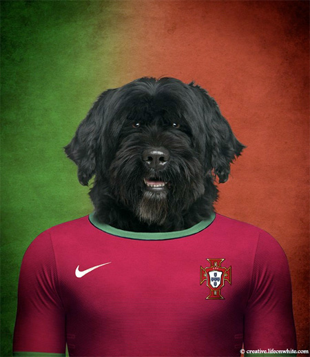 FIFA World Cup Dogs