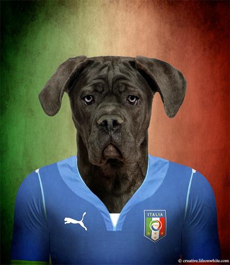 FIFA World Cup Dog