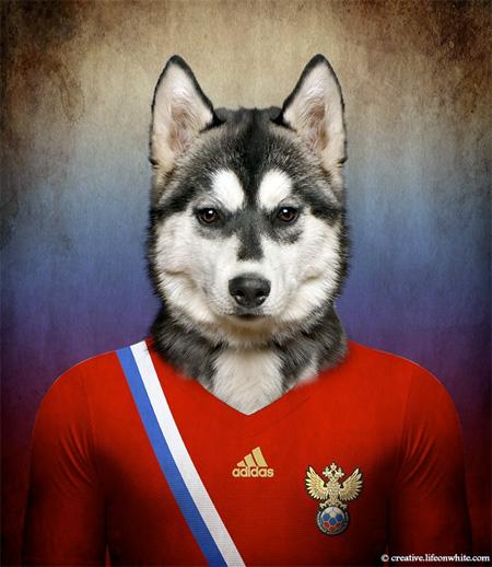 Soccer Nations Dog