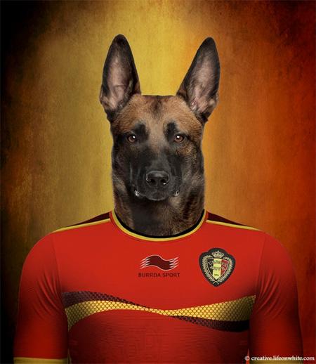 Nations Dog