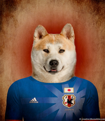 Football Nations Dogs