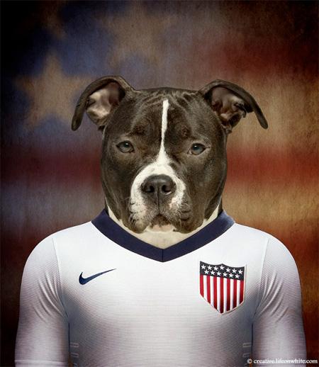 Football Nations Dog