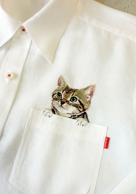 Cats in Pockets