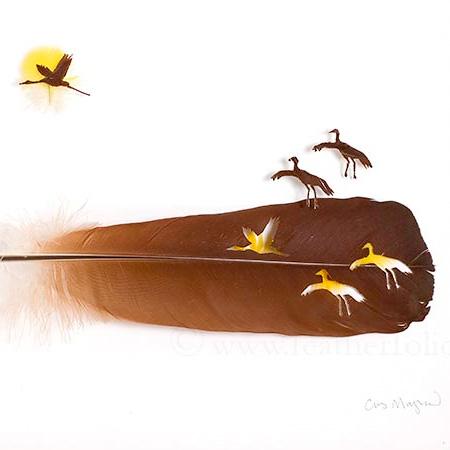 Feather Artist Chris Maynard