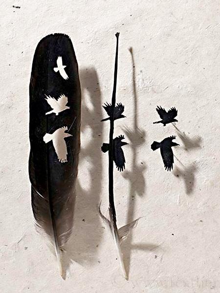 Beautiful Feather Art