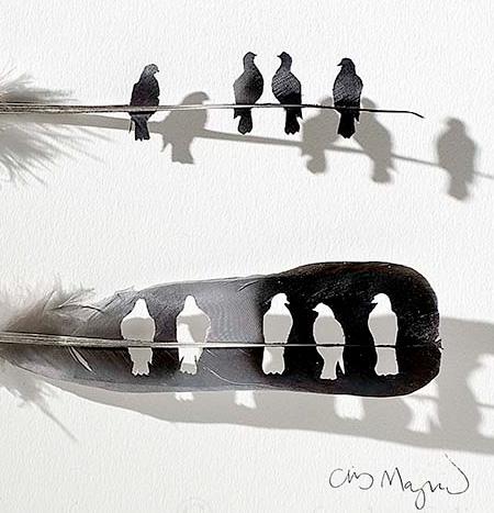 Feather Artwork
