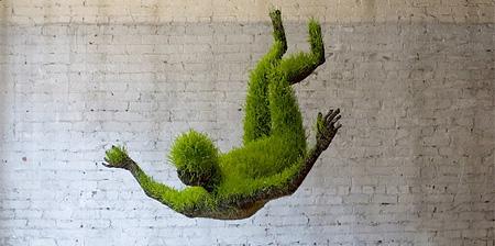 Lives of Grass