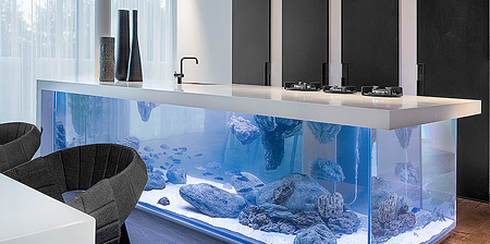 Kitchen Aquarium
