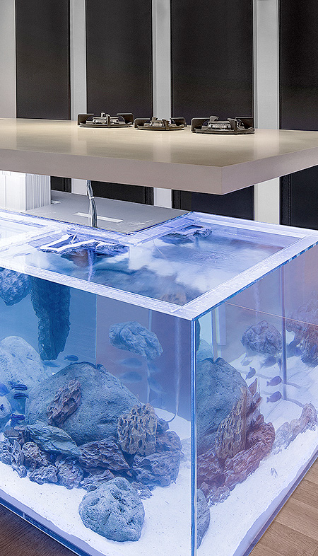 Aquarium for your Kitchen