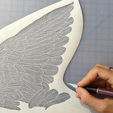 Brave Bird Paperwork