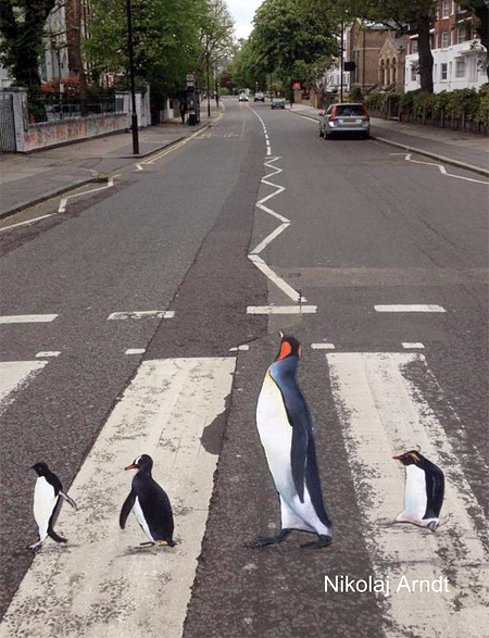Street Artist Nikolaj Arndt