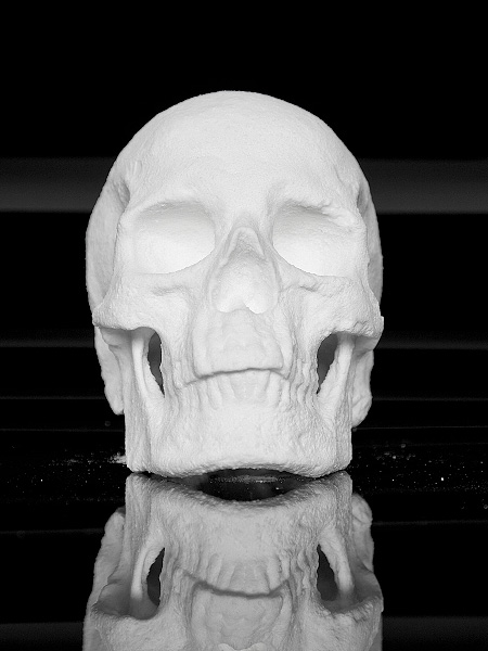 Human Skull Made of Cocaine