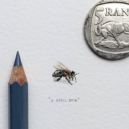 Tiny Art by Lorraine Loots