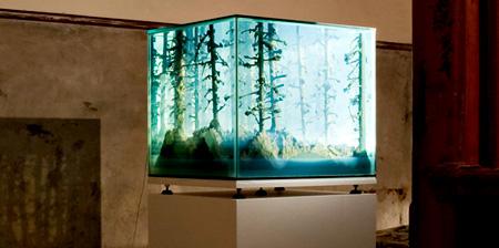 Aquarium Landscapes