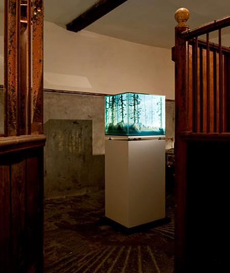 Aquarium Landscapes by Mariele Neudecker