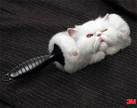 3M Lint Roller Cat