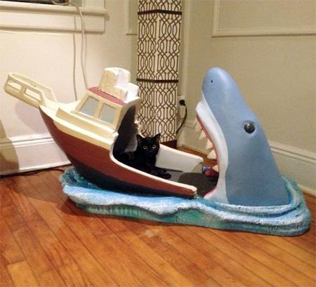 Joseph Reginella Shark