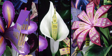 Architectural Flowers