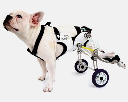 Amigo Dog Wheelchair