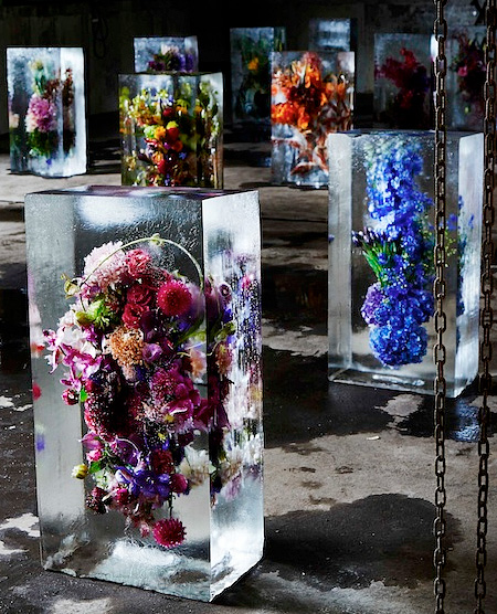 Iced Flowers