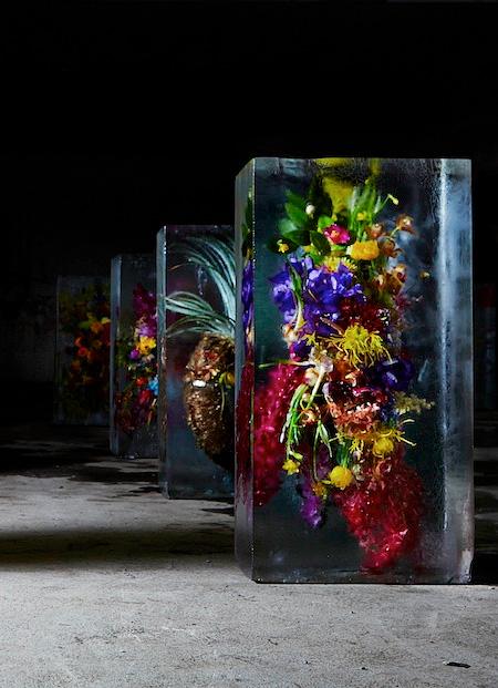 Iced Flower