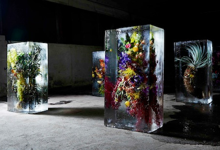 Azuma Makoto Frozen Flowers