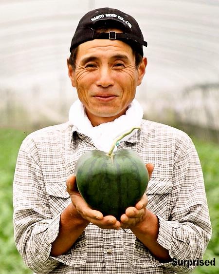Hiroichi Kimura