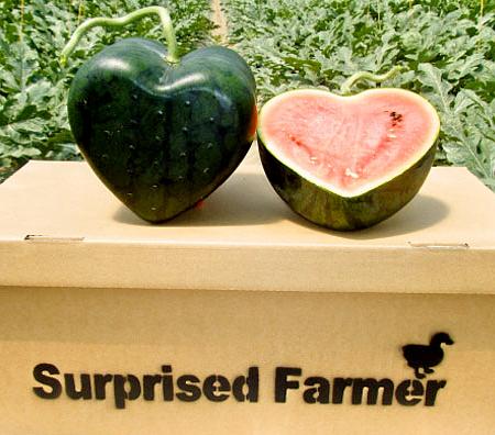 Surprised Farmer