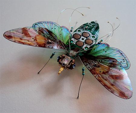 Computer Butterflies