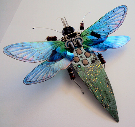 Computer Butterfly