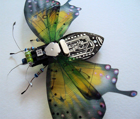 Circuit Board Insects
