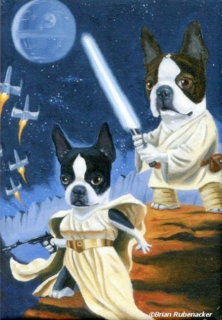 Brian Rubenacker Star Wars Dogs