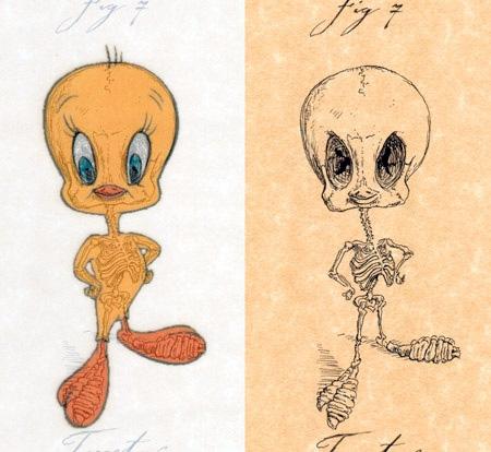 Tweety Skeleton