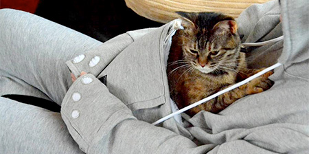 Hoodie for Cat Owners