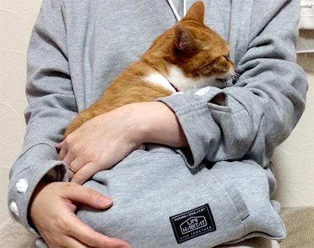 Cat Owners Hoodie