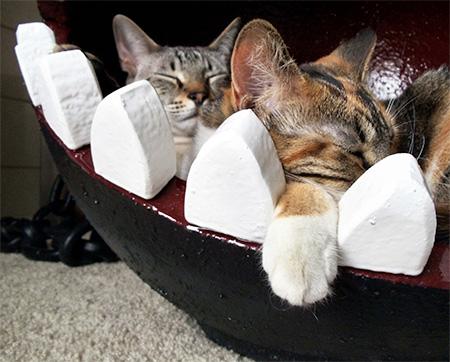 Mario Cat Bed