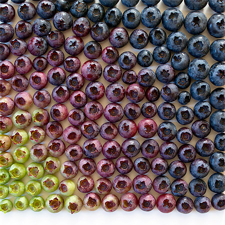 Food Arranged by Colour