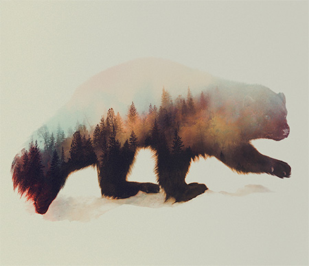 Double Exposure Animal