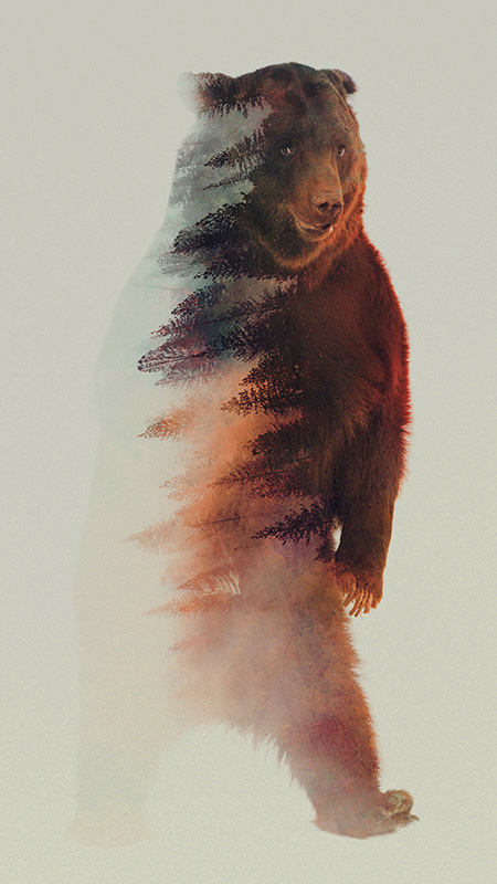 Double Exposure Photography by Andreas Lie