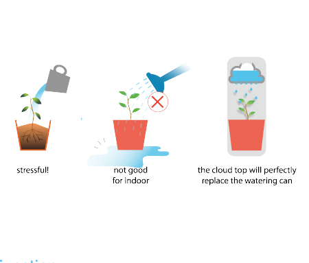 Rainy Flower Pot