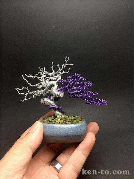 Ken To Wire Bonsai Tree